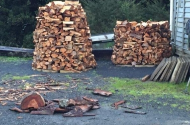 Need firewood for winter!?
